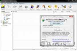 Internet Download Manager Build 11